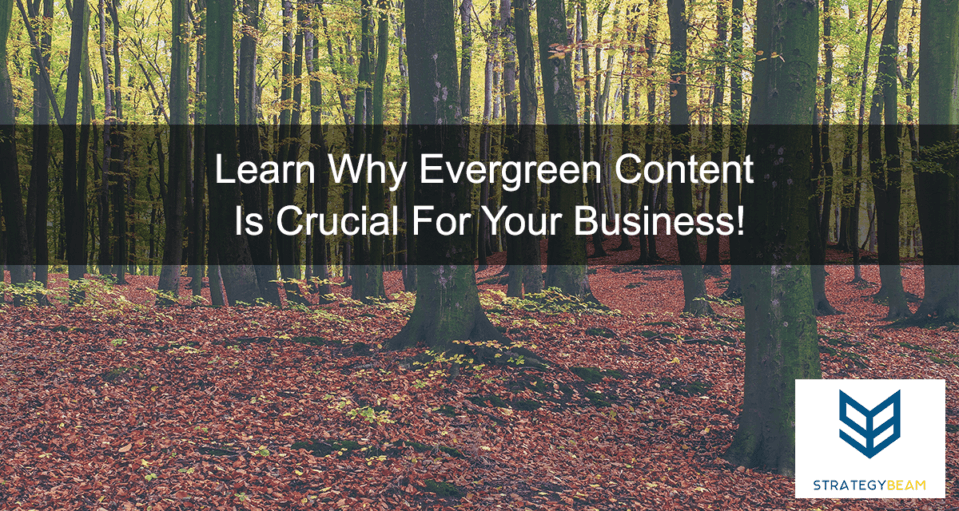 evergreen content strategy business content online marketing strategy content marketing small business online marketing