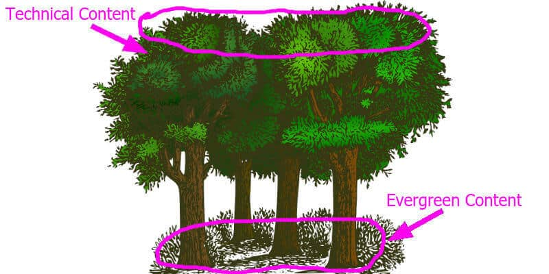 What is evergreen content, evergreen content seo, business evergreen content, Orlando seo copywriter
